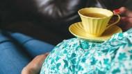 الشاي الاخضر للحامل